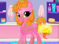 Care Pony