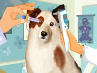 Eye Care Dog With Blog